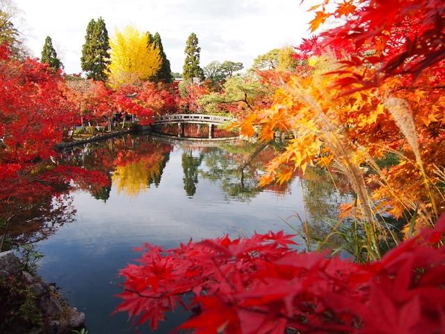 【2021】京都の紅葉32選!見ごろ別に紹介。ライトアップや穴場情報も